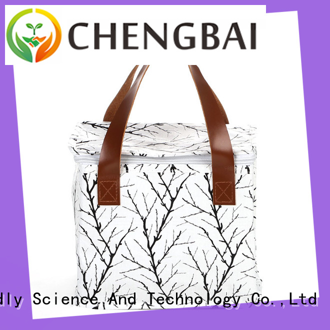 Chengbai logo promotional cooler bag one-stop service supplier for daily necessities