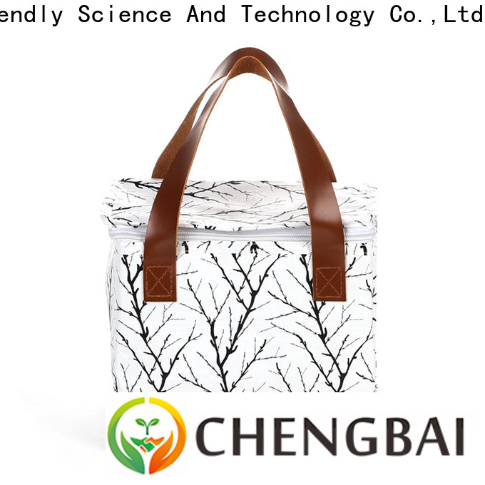 Chengbai soft cooler bag one-stop service supplier for daily necessities