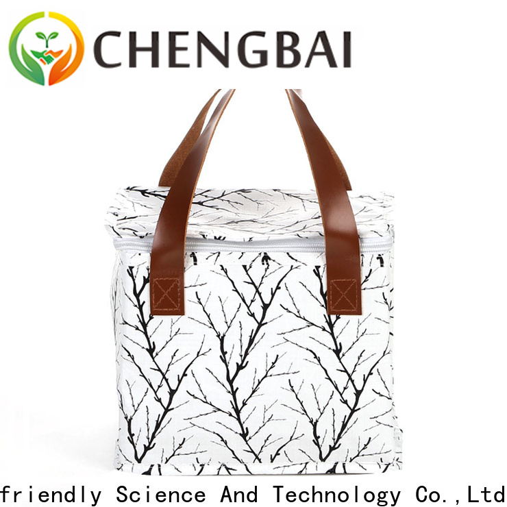 custom logo print ice cooler bag delivery fast delivery for daily necessities