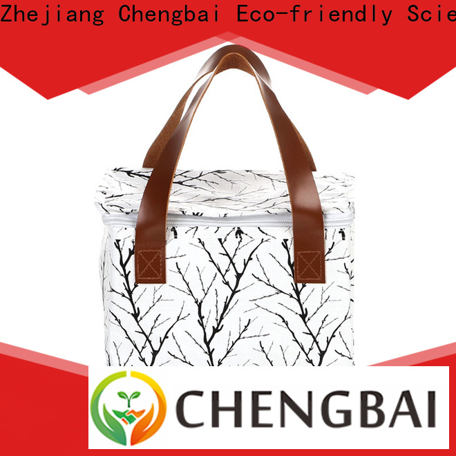 Chengbai outdoor lunch cooler bag source now for daily necessities